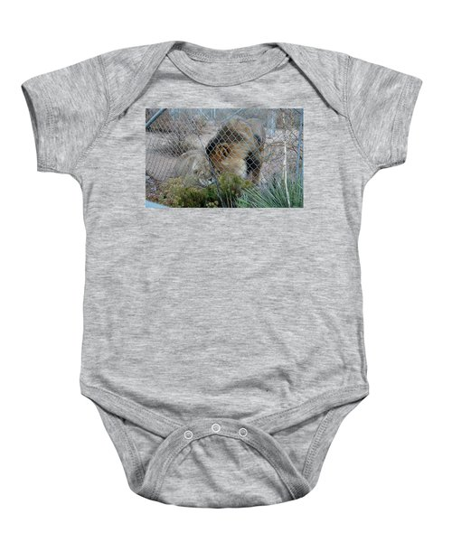 Out Of Africa Lions 4 Baby Onesie