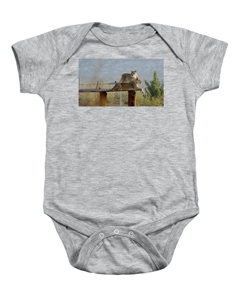 Out Of Africa Lions Baby Onesie