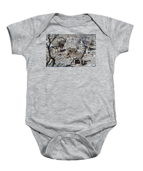 Out Of Africa  Mountain Goats Baby Onesie