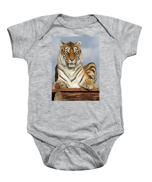 Out Of Africa Tiger 4 Baby Onesie
