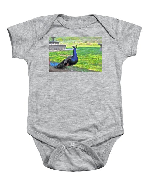 Pretty Peacock Baby Onesie