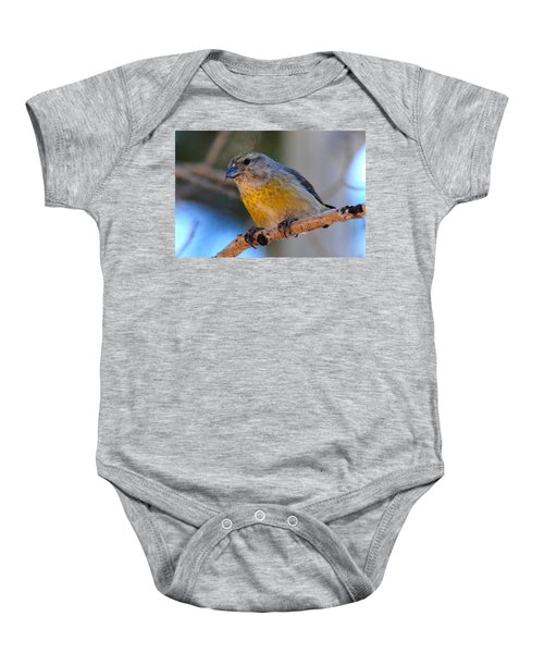 Red Crossbill Female Baby Onesie by Marilyn Burton