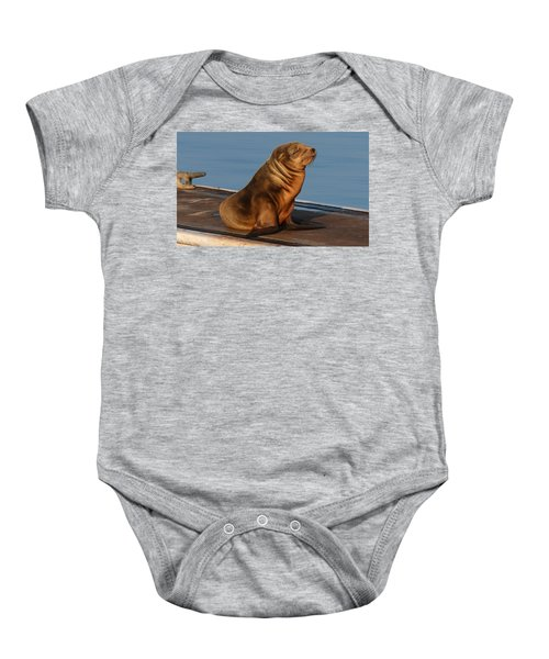 Sleeping Wild Sea Lion Pup  Baby Onesie