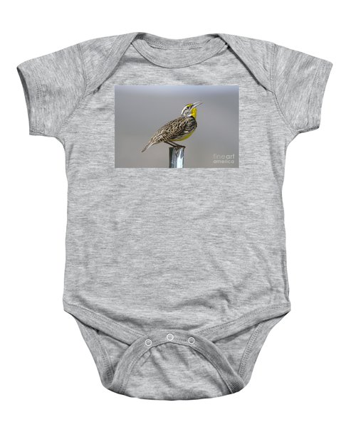The Meadowlark Sings  Baby Onesie by Jeff Swan