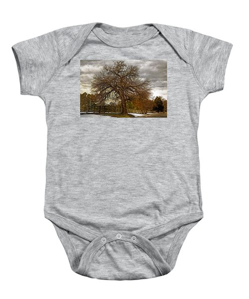 The Welcome Tree Baby Onesie