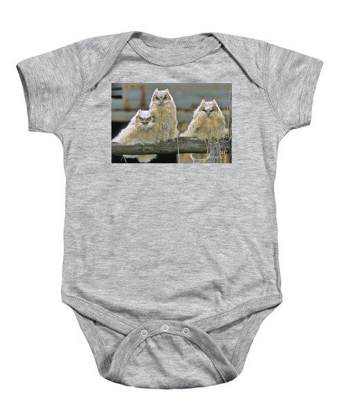 Three Great-horned Owl Chicks Baby Onesie