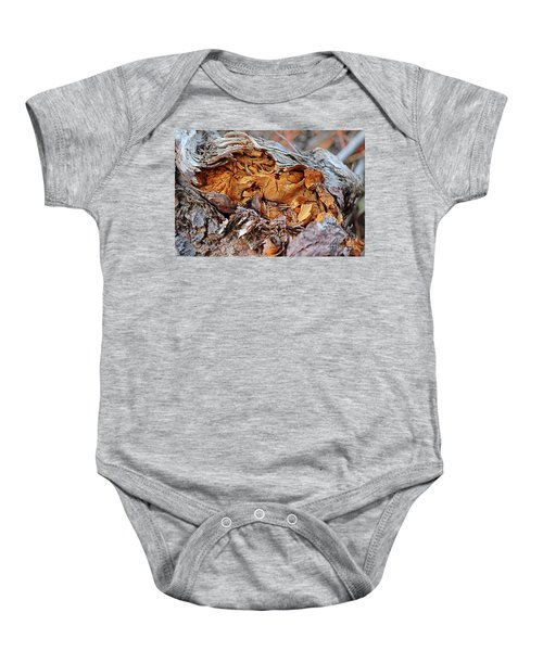 Torn Old Log Baby Onesie