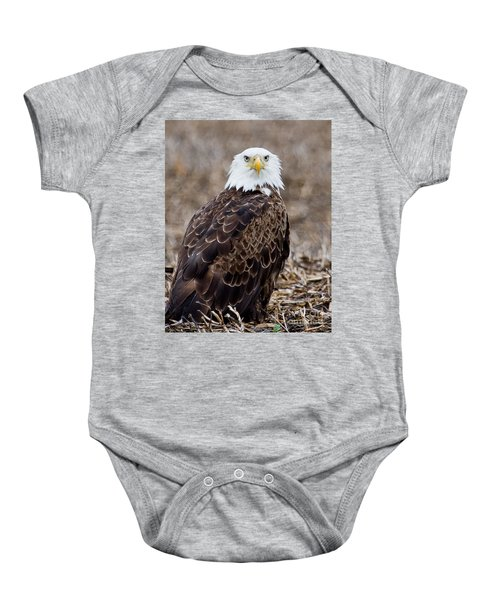 What Baby Onesie
