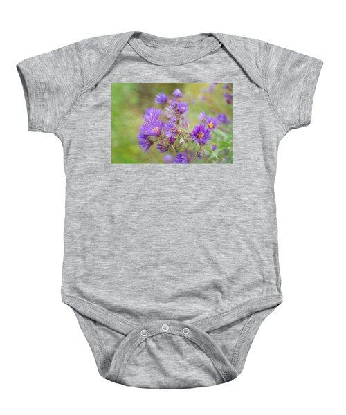 Wild Flowers In The Fall Baby Onesie