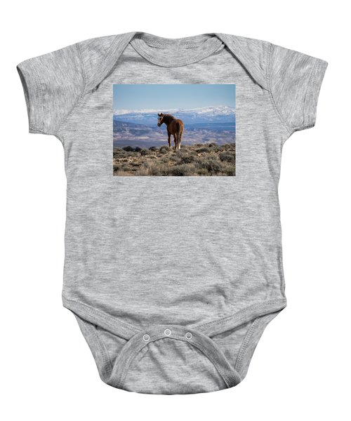 Wild Stallion Of Sand Wash Basin Baby Onesie