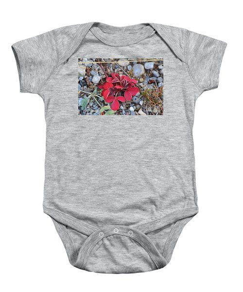 Wild Strawberry Baby Onesie