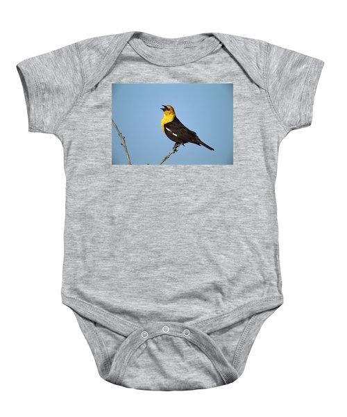 Yellow-headed Blackbird Singing Baby Onesie