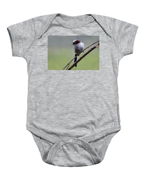 Long Tailed Tit Baby Onesie