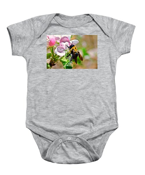 Bee On An Apple Blossom Baby Onesie