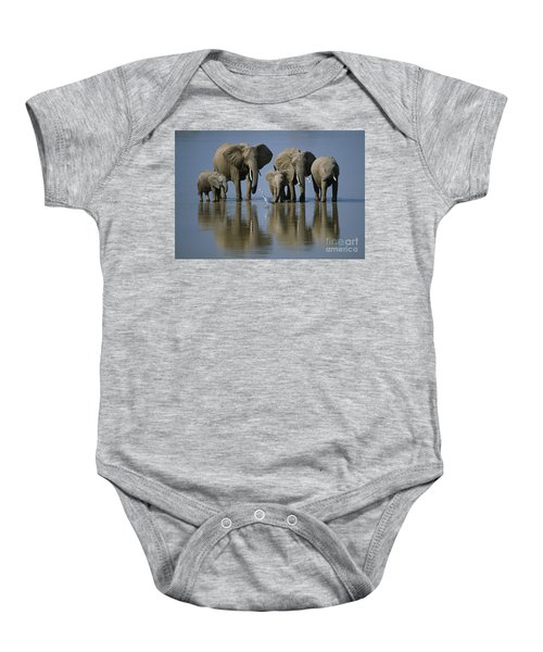 Elephants Baby Onesie