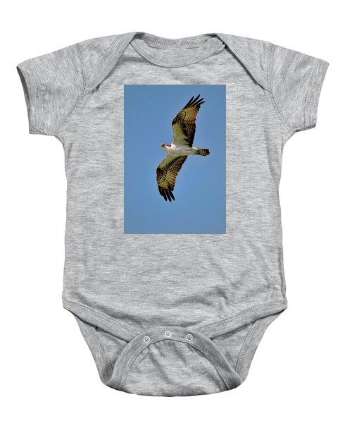 Osprey Above Baby Onesie