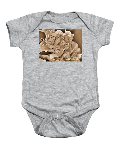 Peony Named Shirley Temple Baby Onesie