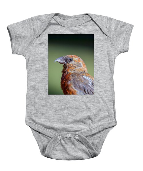 Red Crossbill Baby Onesie by Derek Holzapfel