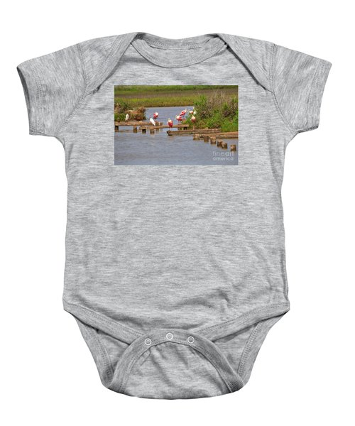Roseate Spoonbills And Snowy Egrets Baby Onesie by Louise Heusinkveld
