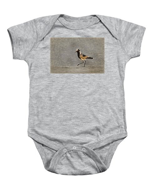 Black-winged Lapwing Art Baby Onesie by Kay Brewer