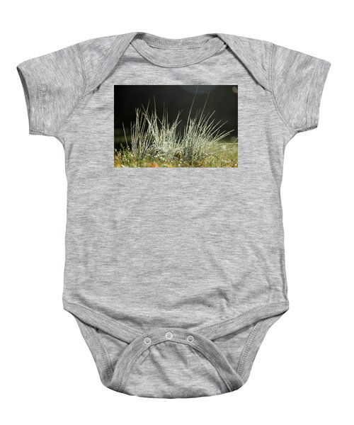 Close-up Of Dew On Grass, In A Sunny, Humid Autumn Morning Baby Onesie