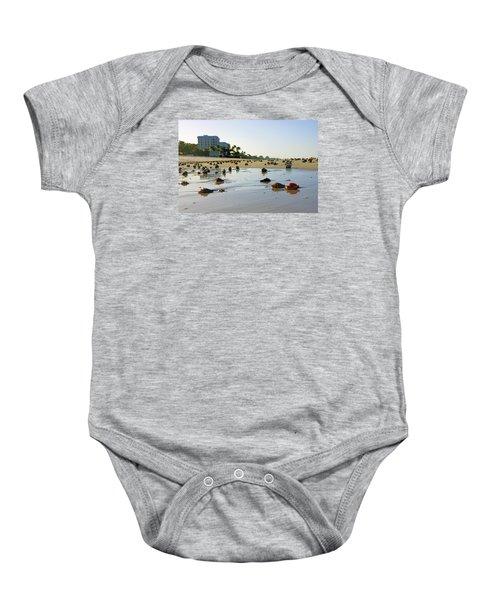 Fighting Conchs On The Beach In Naples, Fl Baby Onesie