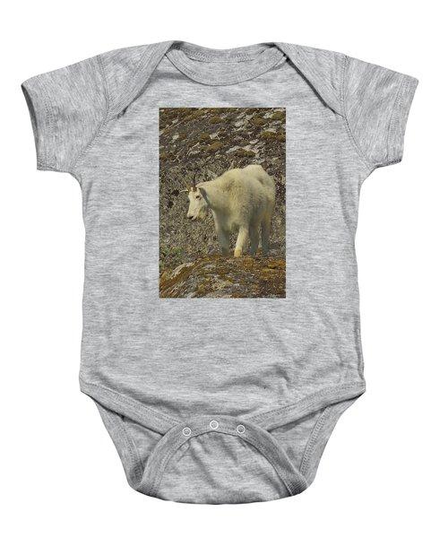 Mountain Goat Ewe Baby Onesie