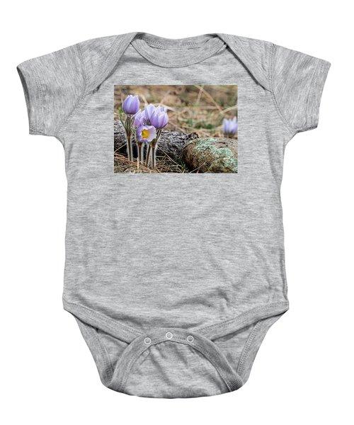Pasque Flower Baby Onesie
