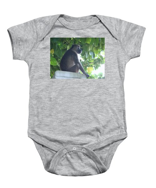 Baboon Sits Guard  Baby Onesie