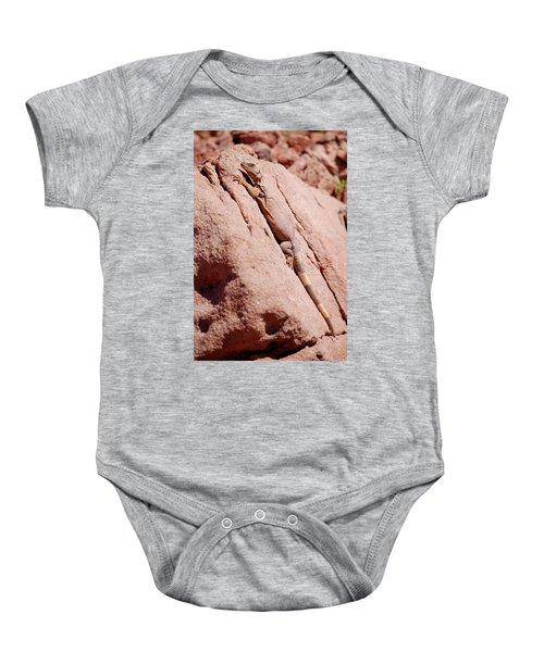 Chuckwalla, Sauromalus Ater Baby Onesie