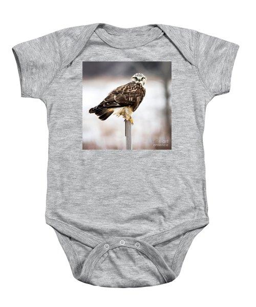 Rough-legged Hawk Baby Onesie
