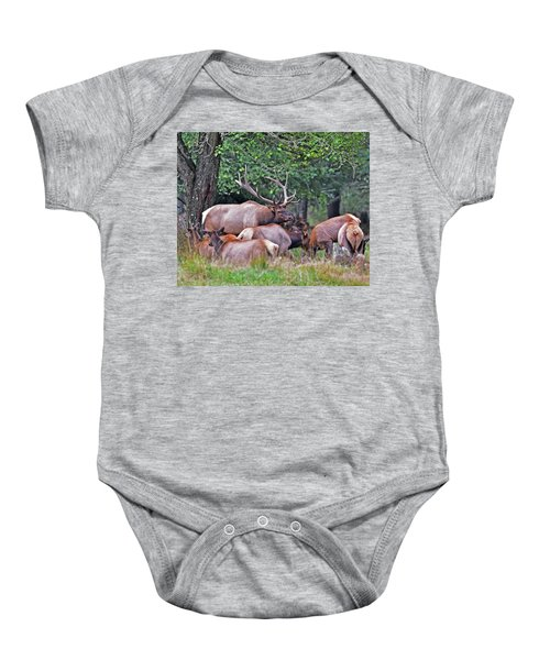 Royal Roosevelt Bull Elk Baby Onesie