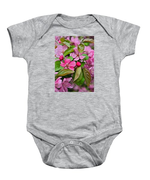 2015 Spring At The Gardens Pink Crabapple Blossoms 2 Baby Onesie