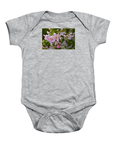 2015 Spring At The Gardens White Crabapple Blossoms 1 Baby Onesie