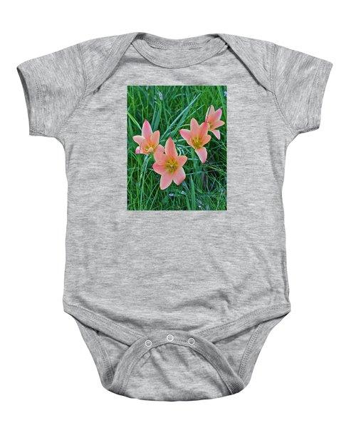 2015 Spring At The Gardens Meadow Garden Tulips 3 Baby Onesie