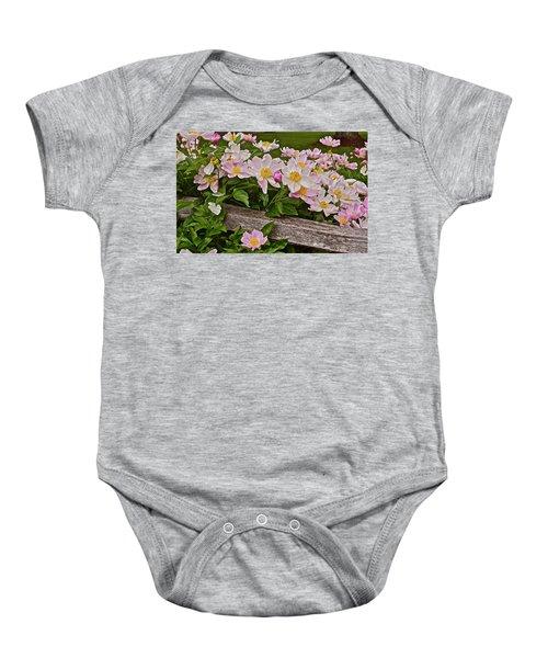 2015 Summer's Eve Neighborhood Garden Front Yard Peonies 3 Baby Onesie