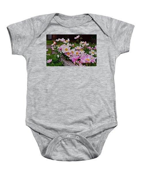 2015 Summer's Eve Neighborhood Garden Front Yard Peonies 4 Baby Onesie