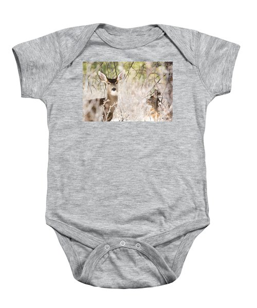 Herd Of Mule Deer In Deep Snow Baby Onesie