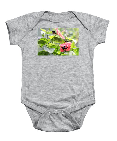 Cream-spotted Clearwing Butterfly Baby Onesie