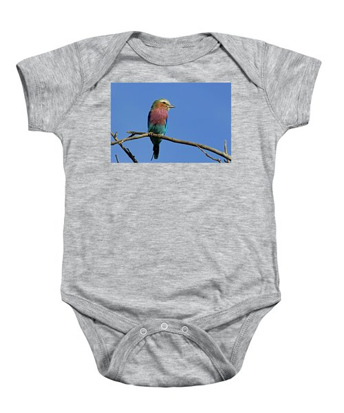 Lilac Breasted Roller Baby Onesie