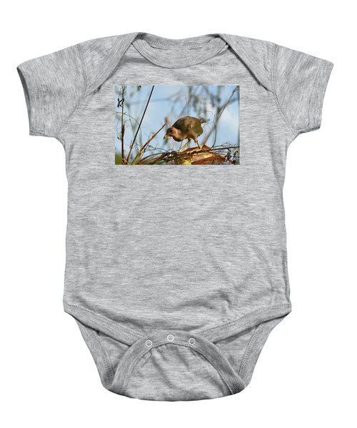 Adolescent Purple Gallinule Baby Onesie