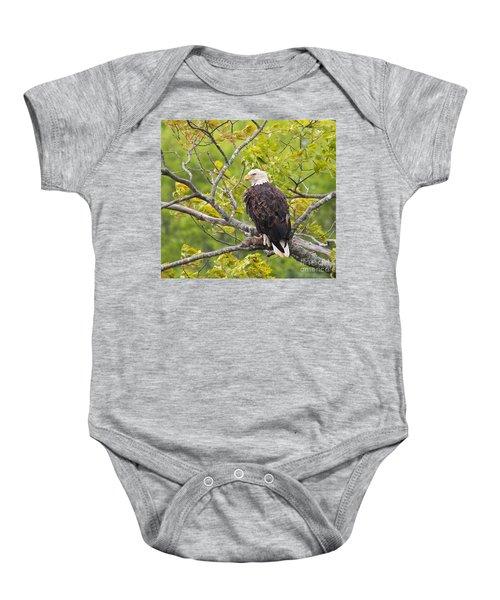 Adult Bald Eagle Baby Onesie