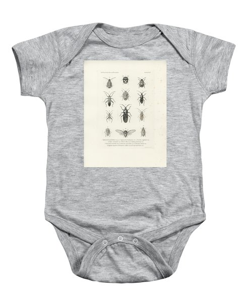 African Bugs And Insects Baby Onesie