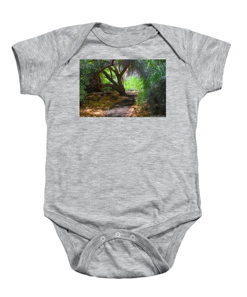 Along The Path Baby Onesie