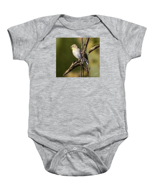 Baby Onesie featuring the photograph American Goldfinch In Fall Colors  by Ricky L Jones