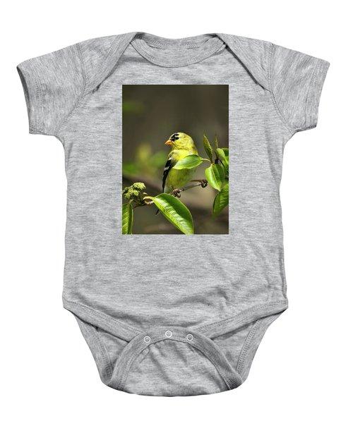 American Goldfinch On Branch Baby Onesie
