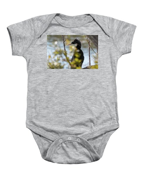 Anhinga 3 March 2018 Baby Onesie