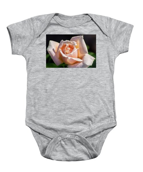 Another Beautiful Pink Rose Baby Onesie