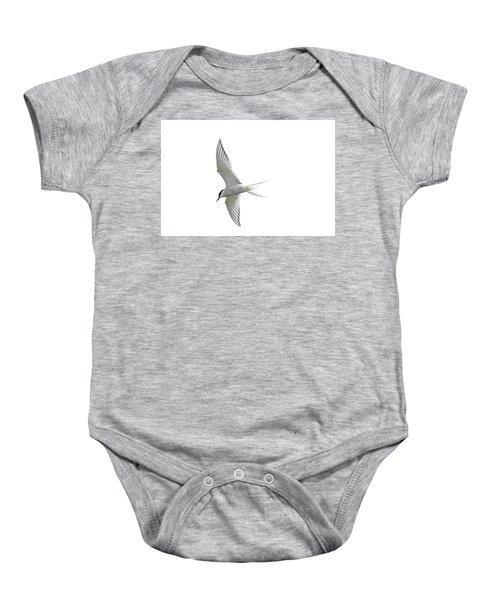 Arctic Tern Flying In Mist Baby Onesie