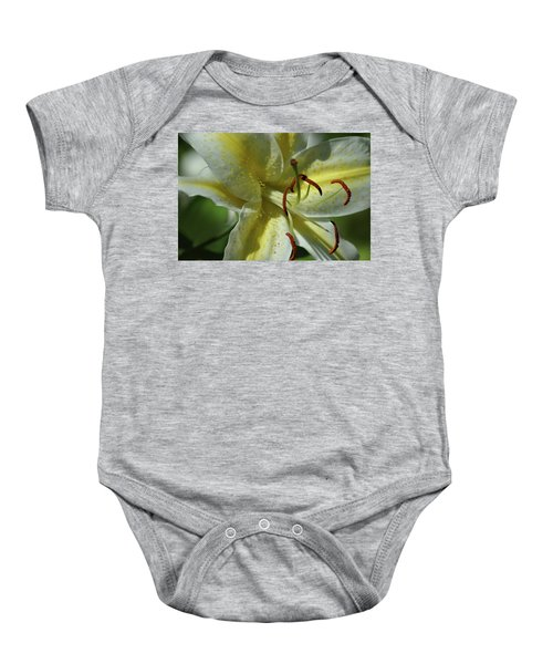 Asiatic Lily No 2 Baby Onesie